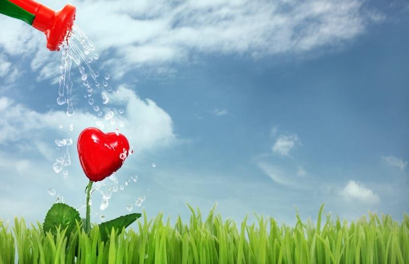 Sencillo Para Atraer El Amor: Mujer por DON LINO: Baños para atraer ...